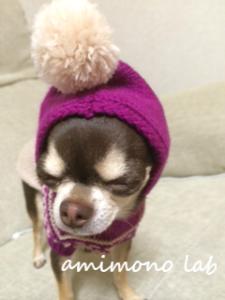 dogknit 手作り犬服 T&T company チワワ